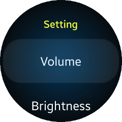 (Circle) Settings UI