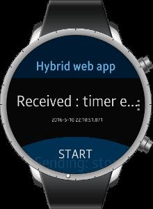 Hybrid Web App